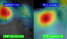 MATLAB for Medical Imaging Applications